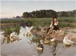 Daydreaming with the Geese