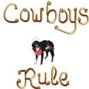 Border Collie Cowboys Rule