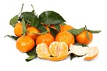 Oranges with Green Leaves