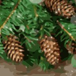 Pine Cones for Christmas