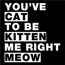You Cat To Be Kitten Me Right Meow