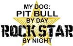 Rock Star by Night