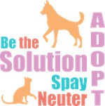 New Be The Solution