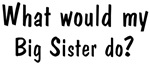 What would Big <strong>Sister</strong> do