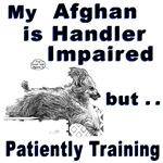 Afghan Agility