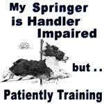 Springer Spaniel Agility