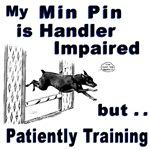 Min Pin Agility