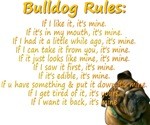 Rules-Gold
