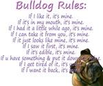 Rules- Purple