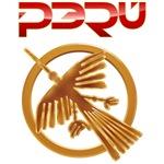 Peru Nazca Condor