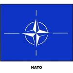 NATO Military Flag