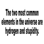Stupidity in the Universe Humor