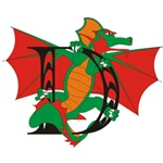 Dragon D Initial Personalized T-shirts & Gifts