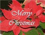 Holidays - Seasonal