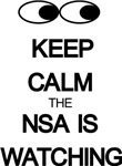 Keep Calm The NSA Is Watching