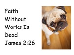 Faith Without Works Dog