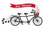 Just married, wedding tandem bicycle