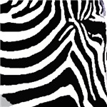 Zebra print