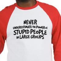 Power of Stupid People