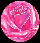 Roses in 5 colors!