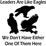 Leaders Are Like Eagles
