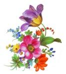 Dresden Flowers