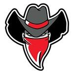 Cowboy Bandit