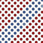 Red, White, And Blue Star Flowers