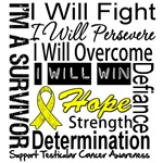 Testicular Cancer Persevere Shirts