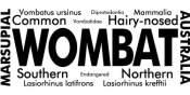 Wombat Words