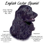 English Cocker Spaniel (black)