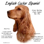 English Cocker Spaniel (red)
