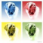 Mastiff Pop