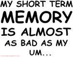 My Short Term Memory Is Almost As Bad As My... um.