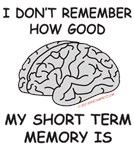 I Don't Remember How Good My Short Term Memory Is