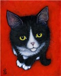 Harry Kitten