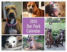 2015 Our Pack Calendar