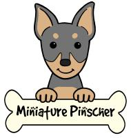 Miniature Pinscher Cartoon T-Shirts and Gifts