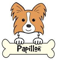 Papillon Cartoon T-Shirts and Gifts