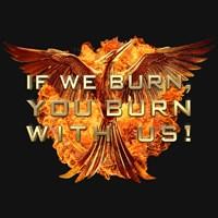 IF WE BURN