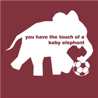 Touch of a Baby Elephant