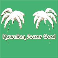 Hawaiian Soccer Goal