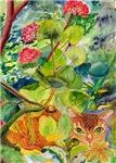Bob Cat with Geranium