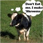 Don't Eat Me . . . I make 'Shrooms