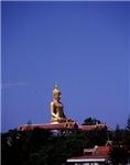 Golden Budha on the Horizon