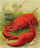 Oh You Lobster
