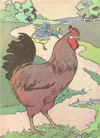 Cocky Locky