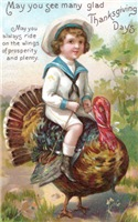 Turkey Steed