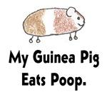 My Guinea Pig Eats Poop.