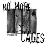 No More Cages